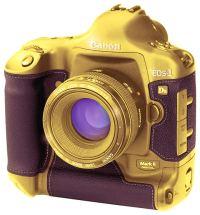 gold photo